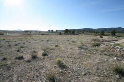Land in Murcia, Canada del Trigo