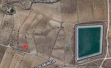 13200m2 of Land near Pinoso