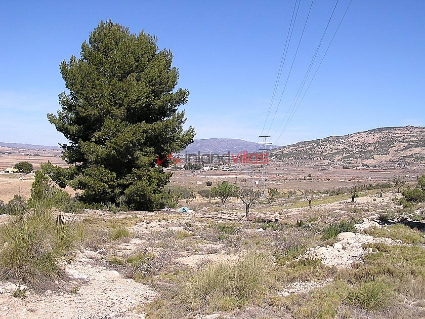 Building land in Pinoso in Inland Villas Spain