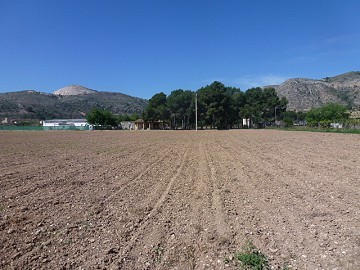 Aspe, plot for sale! - Building Plots for sale in Aspe, Alicante | Alicante, Aspe