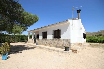 Detached Country House with a pool close to Yecla