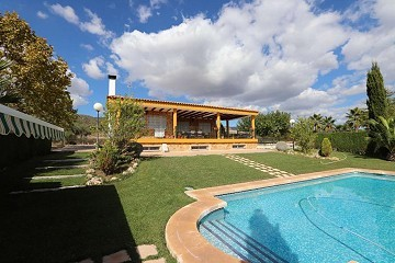 Spectacular  country house with pool and its own vineyard