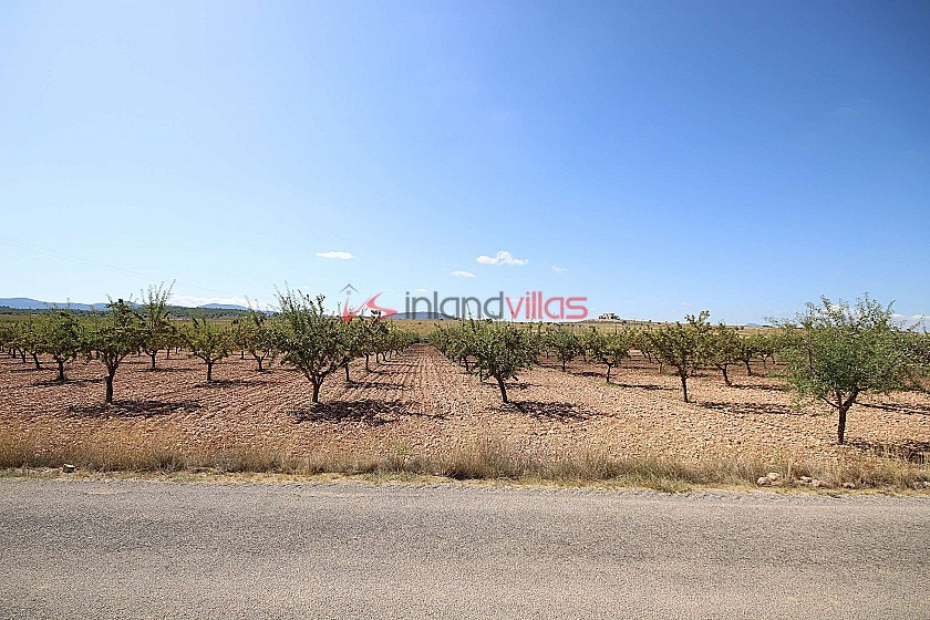 Building plot of land with almond trees in Inland Villas Spain