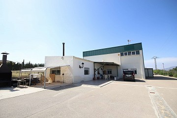 Detached Villa with industrial unit near Monovar and Pinoso