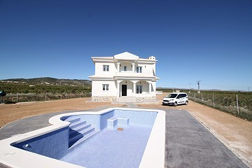 Villa in Alicante, Pinoso