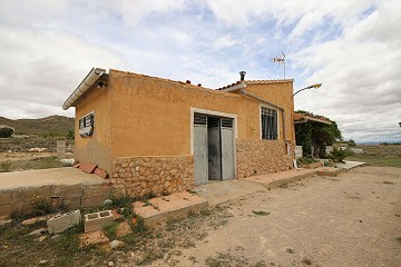 Detached Country House in Yecla