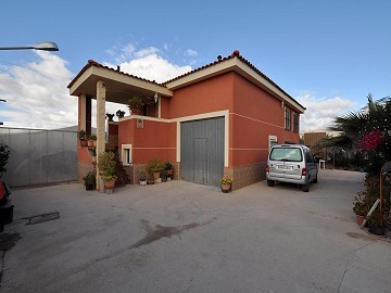 Large Eco farm with 200m2 Villa in Agost