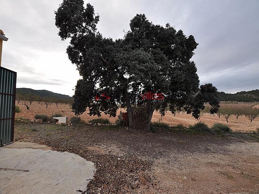 Amazing Eco villa in the Sierra de Salinas national park  in Inland Villas Spain
