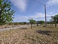 Legal Building Plot with mains water and electric in Salinas close to Sax in Inland Villas Spain