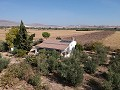 Detached Villa in Caudete with solar panels in Inland Villas Spain