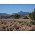 Stunning plot with stunning views in Inland Villas Spain