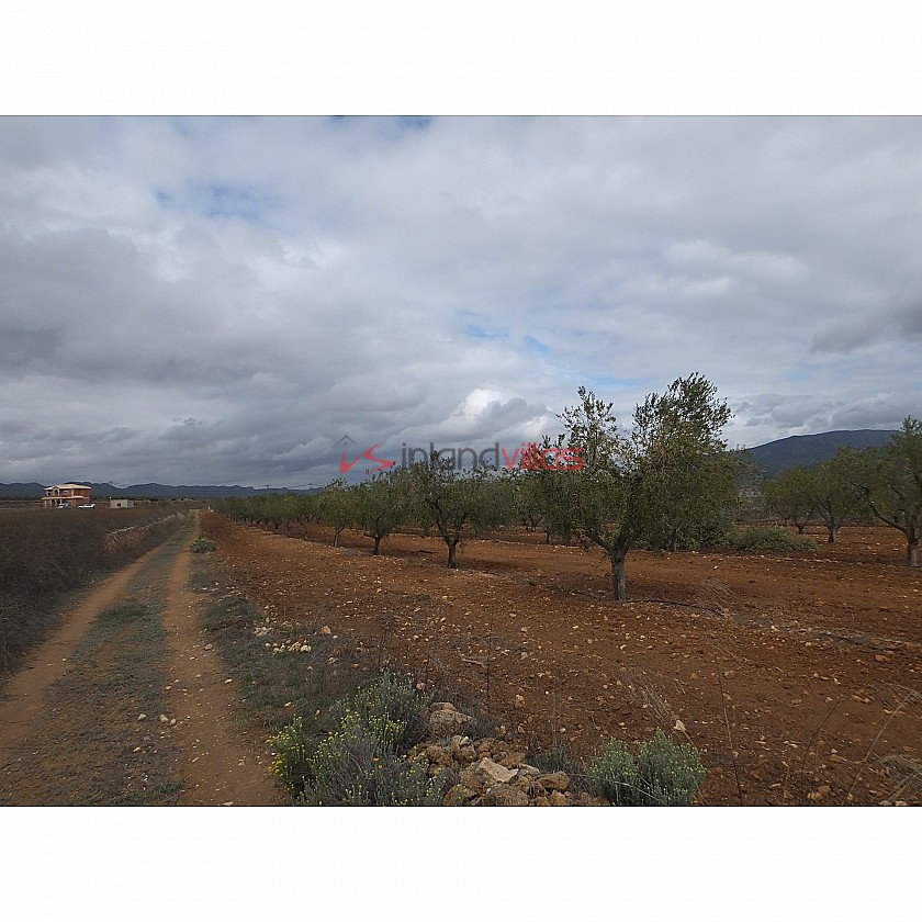 Plot in Raspay in Inland Villas Spain