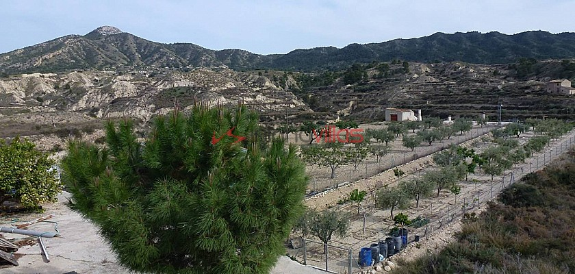 Cave House for sale in La Umbria, Abanilla, Murcia in Inland Villas Spain