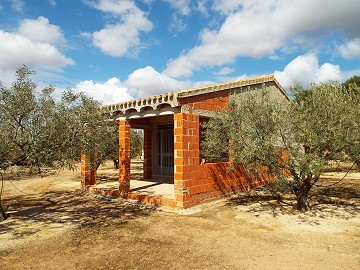 House in Caudete to complete build, Albacete