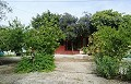 Lovely Villa in Ricabacica, Abanilla + olive grove in Partidor in Inland Villas Spain