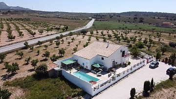 Detached country house Jumilla